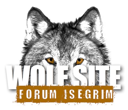Steckbrief Wolf - Wölfe in Deutschland