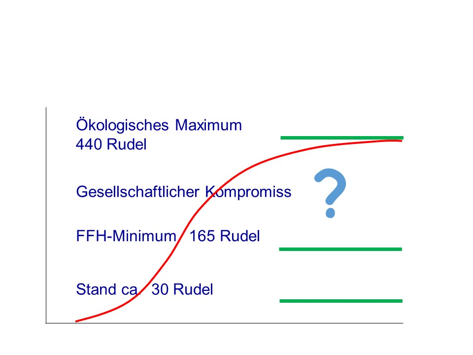Wieviel single frauen gibt es in deutschland