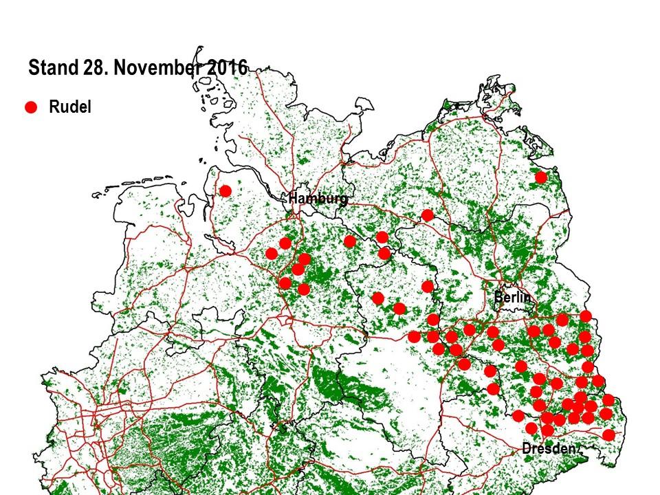 Gegenwärtige Position der Wolfsrudel in Deutschland. Auf die Darstellung von territorialen Paaren und Einzeltieren habe ich verzichtet.